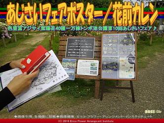 あじさいフェアポスター/花前カレン画像03