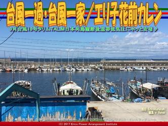 台風一過・台風一家(3)/エリ子花前カレン画像02