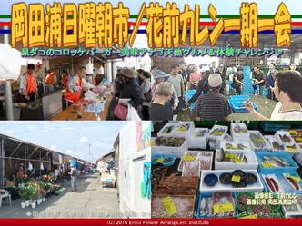 岡田浦日曜朝市/花前カレン一期一会画像02