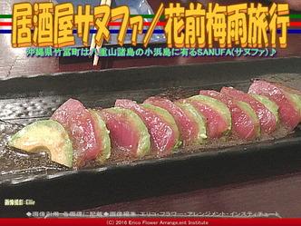 居酒屋サヌファ(2)/花前梅雨旅行画像03