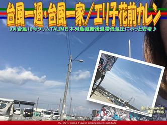 台風一過・台風一家/エリ子花前カレン画像01