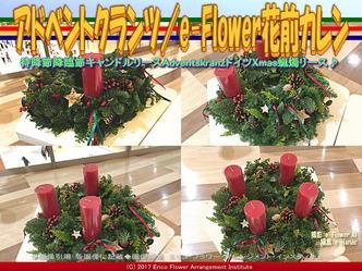 アドベントクランツ(4)/e-Flower花前カレン画像01 ▼画像クリックで640x480pxlsに拡大@エリ子花前カレン