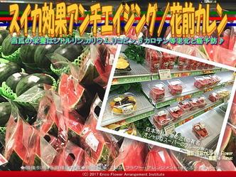 スイカ効果アンチエイジング(3)/花前カレン画像01