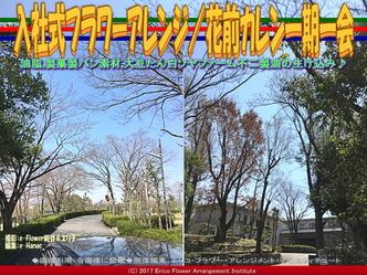 入社式フラワーアレンジ(7)/花前カレン一期一会画像01