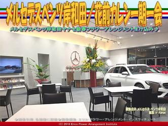 メルセデスベンツ岸和田/花前カレン一期一会画像02