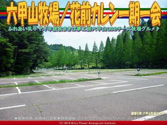 六甲山牧場(5)駐車場/花前カレン画像02