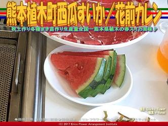 熊本植木町西瓜すいか(4)/花前カレン画像01