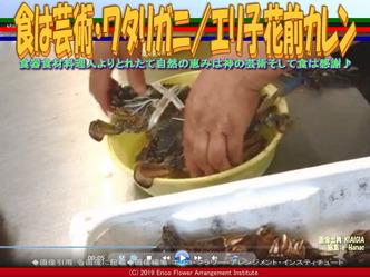 食は芸術・ワタリガニ(3)/エリ子花前カレン画像01 ▼画像クリックで640x480pxlsに拡大@エリ子花前カレン