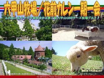六甲山牧場(2)アクセス/花前カレン画像02