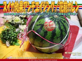 西瓜効能アンチエイジング/花前カレン画像01