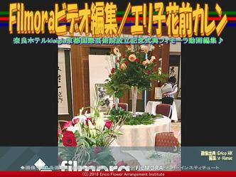 Filmoraビデオ編集(4)/エリ子花前カレン画像02 ▼画像クリックで640x480pxlsに拡大@エリ子花前カレン