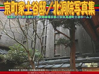 京町家土谷邸(9)/北洞院写真集画像03 ▼画像クリックで640x480pxlsに拡大@北洞院エリ子花前カレン