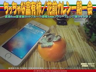 カキ富有柿/花前カレン画像01