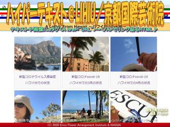 ハイパーテキスト@LIHIU(5)/京都国際芸術院画像02 ▼画像クリックで640x480pxlsに拡大@北洞院エリ子花前カレン