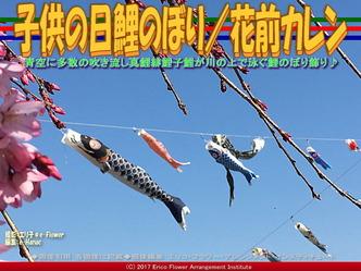 子供の日鯉のぼり/花前カレン画像03
