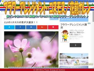 コスモス・フラワーアレンジ(3)/花前カレン画像03