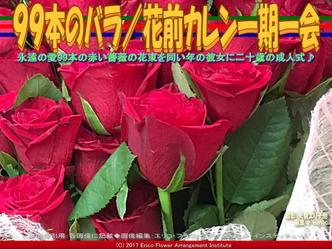 99本のばら花束(5)/花前カレン画像01
