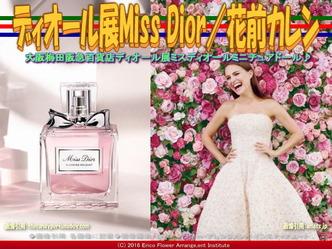 ディオール展Miss Dior(3)/花前カレン画像01