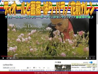 ディオールとバラ(5)/花前カレン画像02