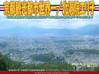 京都観光都市世界一(2)/北洞院エリ子画像02 ▼画像クリックで640x480pxlsに拡大@エリ子花前カレン