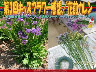 第3回キッズフラワー感想【8】/花前カレン画像01