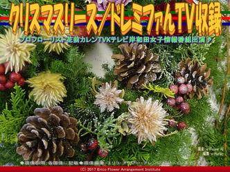 クリスマスリース(6)/ドレミファんTV収録画像01 ▼画像クリックで640x480pxlsに拡大@エリ子花前カレン