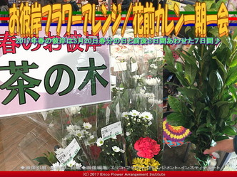 お彼岸フラワーアレンジ(3)/花前カレン画像02
