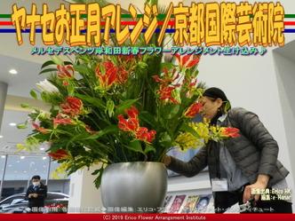 ヤナセお正月アレンジ(6)/京都国際芸術院画像01 ▼画像クリックで640x480pxlsに拡大@エリ子花前カレン