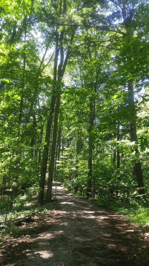 July8_Kortright (2)