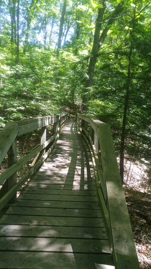 July8_Kortright (4)