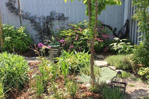 May20_garden