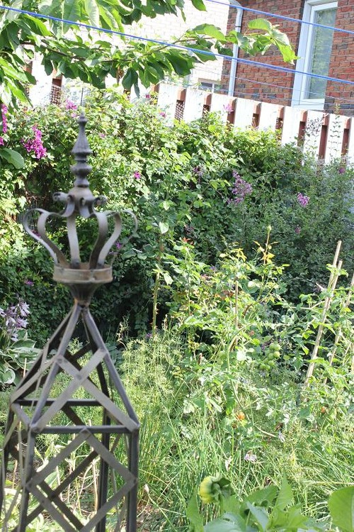 Aug5_garden2
