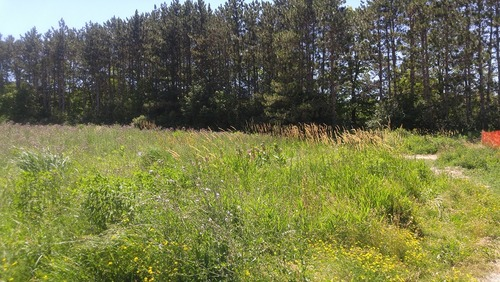 July8_Kortright (20)