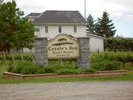 coyote_winery