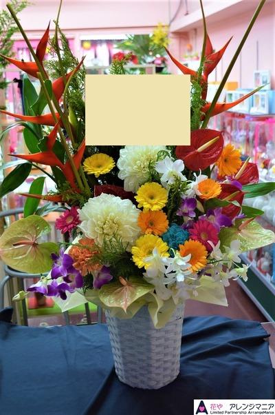 沖縄の花屋ー開店祝い