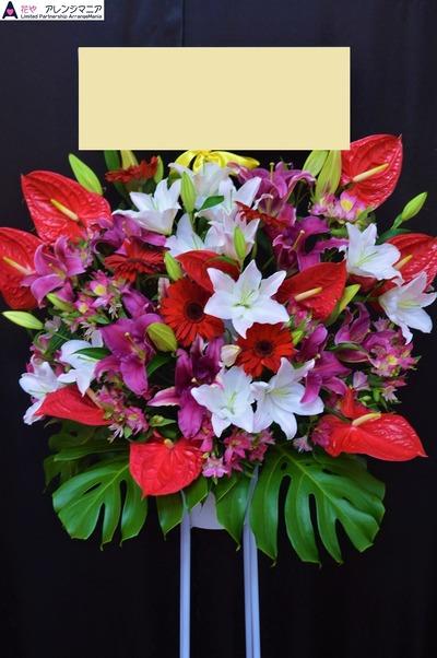 沖縄の開店祝いスタンド花・胡蝶蘭