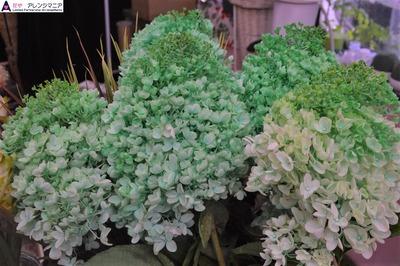 沖縄(那覇市松山)の花屋アレンジマニア