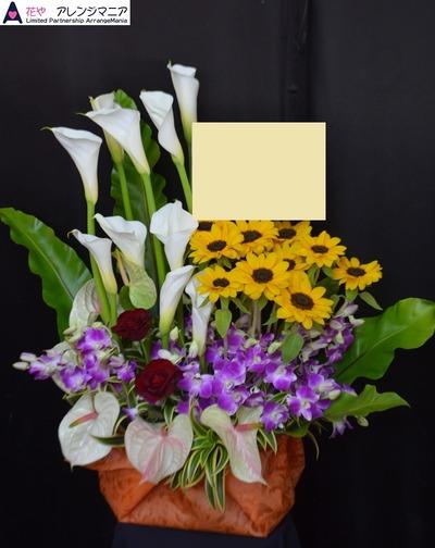 南国アレンジ・沖縄の花屋・開店祝い