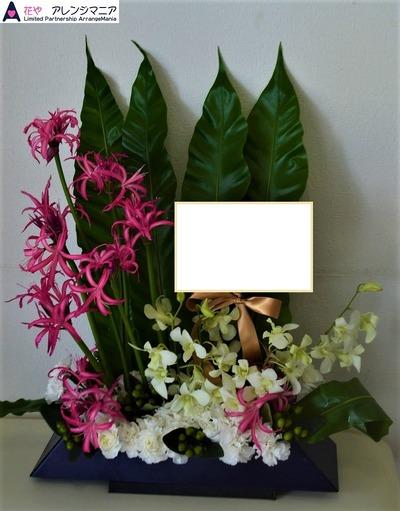 沖縄の花屋・開店祝い6600
