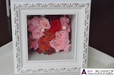 preserved-flower (2)