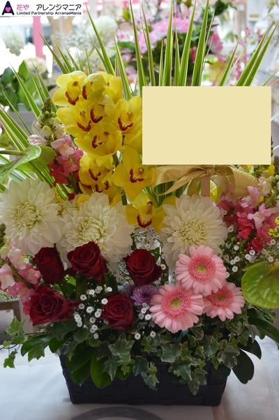 沖縄の開店祝いのお花