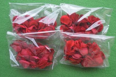 沖縄の花屋ローズペダル (2)