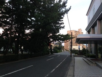 IMG_9242