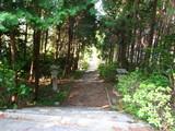 朝のお散歩7