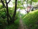 朝のお散歩5
