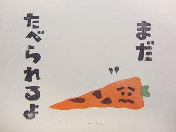 くさりかけ にんじん (1)