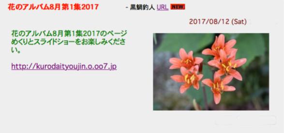 8/13 花のアルバム8月第1集