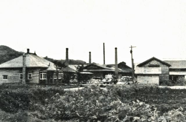 昭和28年頃の国縫ベニヤ工場