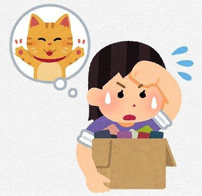 s-20200512猫の手も借りたい女性
