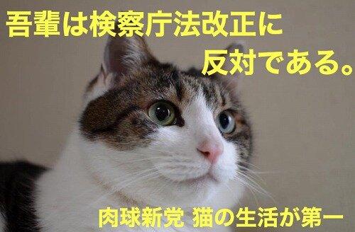 s-20200514検察庁法改正案に反対